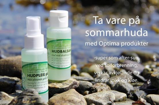 webside_sommarhuda